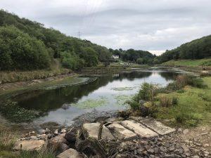 Wales taster Waterside Felindre