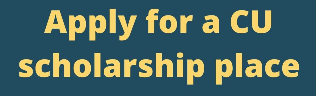 Apply scholarship button