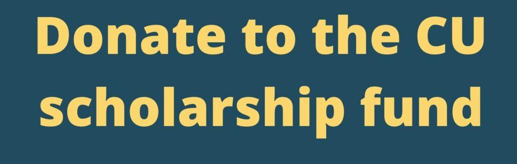 Donate scholarship button