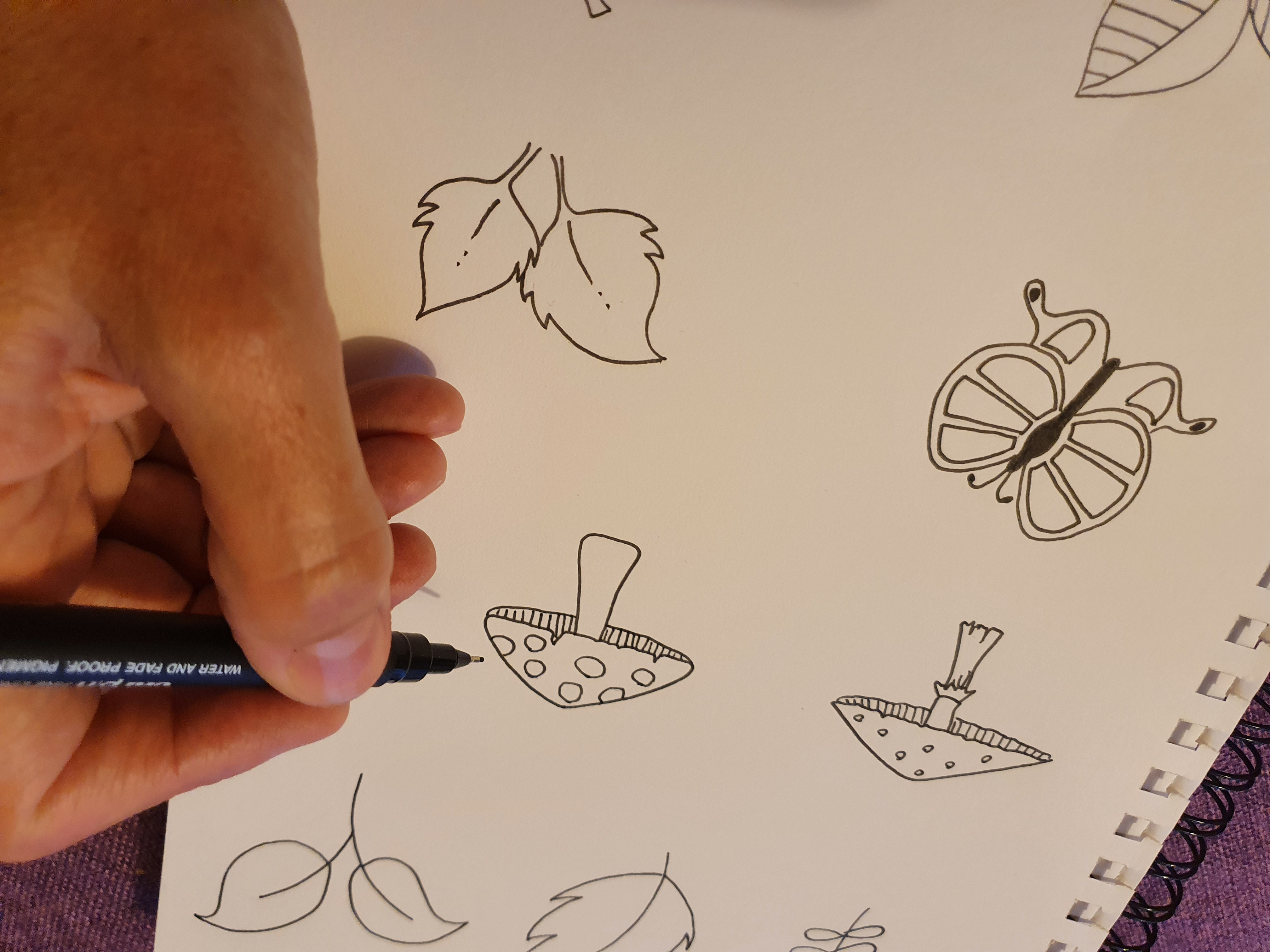Unplugged drawing with Sally – autumn theme